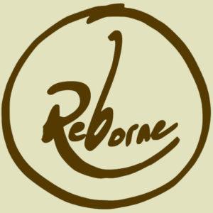 ReBorne Logo Colour Matched